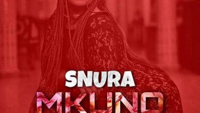 Photo of AUDIO: SNURA – MKUNO WA NAZI