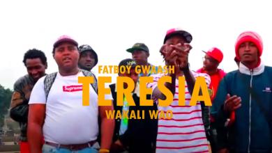 Photo of VIDEO: Gwaash Ft. Wakali Wao – Teresia