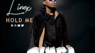 Photo of AUDIO: Linex – HOLD ME   Download
