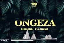Photo of AUDIO: Diamond Platnumz – Ongeza | Download
