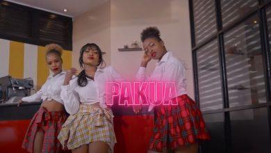 Photo of VIDEO: Jovial ft Mejja – Pakua