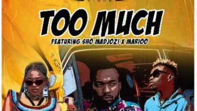 Photo of AUDIO: Rj The Dj Ft Sho Madjozi & Marioo – Too Much | Download