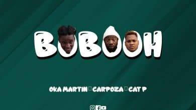 Photo of AUDIO: Wanyabi – Bobooh | Download