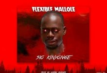 Photo of AUDIO: Flexible Mallole – Siyo Kinyonge | Download