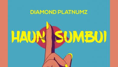 Photo of AUDIO: Diamond Platnumz – Haunisumbui | Download