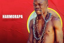 Photo of AUDIO: Harmorapa – Aibu Yao | Download