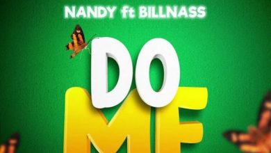 Photo of AUDIO: Nandy Ft. Billnass – Do me | Download