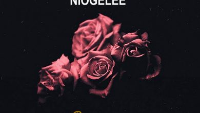 Photo of AUDIO: Ngaya – Niogelee | Download