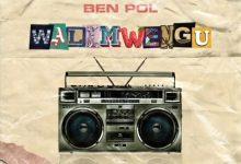 Photo of AUDIO: Ben Pol – Walimwengu | Download
