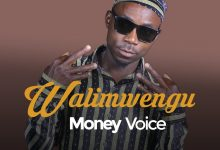 Photo of AUDIO: Money Voice – WALIMWENGU | Download