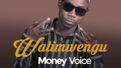 Photo of AUDIO: Money Voice – WALIMWENGU | Download