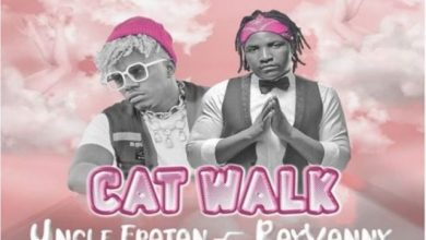 Photo of AUDIO: Uncle Epatan Ft Rayvanny – Cat Walk | Download