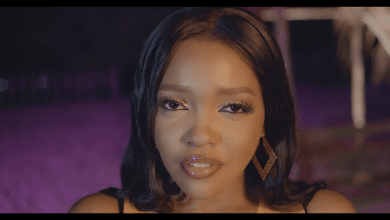 Photo of VIDEO: Seline – Twanga