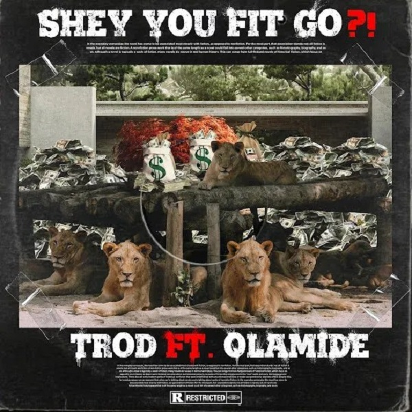 AUDIO: TROD ft Olamide - Shey You Fit Go?! | Download - Bekaboy